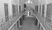 Inca doi TORTIONARI au fost DEMASCATI. Sesizari penale pentru MARIAN PETRESCU si…