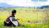 Cele mai frumoase sate din Romania – POIANA STAMPEI, un loc pitoresc situa…
