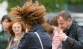 Cod galben de vânt puternic în zece judeţe din Muntenia, Moldova şi Dobrogea