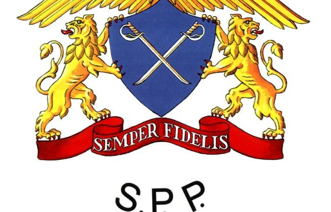 SPP solicita schimbarea unor DISPOZITIVE de CONTROL de la intrarea in SENAT