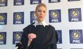 PNL: PSD ii acopera urmele lui SEVIL SHHAIDEH