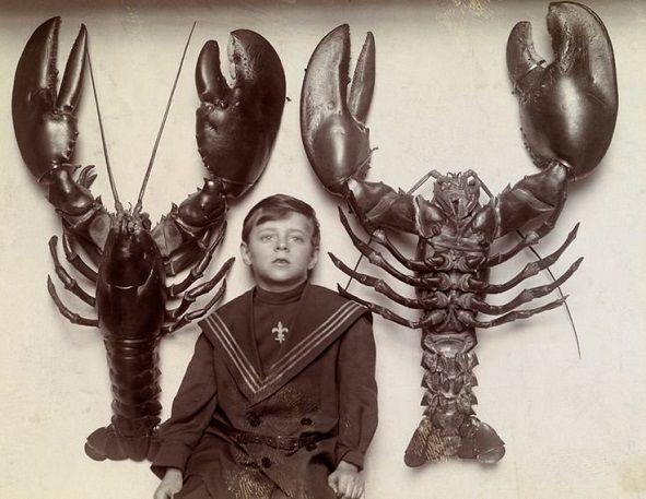 Băiat aflat între doi homari uriași prinși în largul coastei New Jersey, 1915