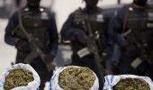 CLUJ: Politia a confiscat 3 kilograme de DROGURI! 16 persoane au fost duse la AU…