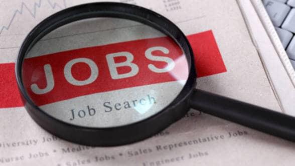 Joburi disponibile pentru români în Olanda, Germania și Austria. Vezi ce mese…