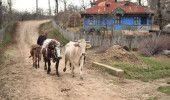 CEA MAI SARACA ZONA din UNIUNEA EUROPEANA se afla in ROMANIA