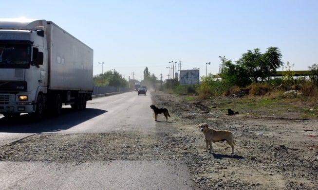 Made in Romania: Soseaua spre Magurele, asfaltata de urgenta pentru vizita presedintelui francez