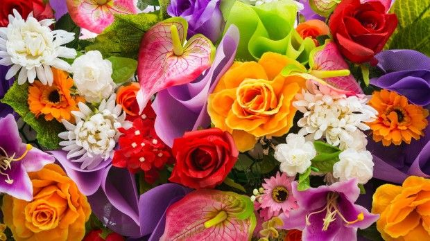 8 martie: Alege florile ei preferate în funcție de zodie