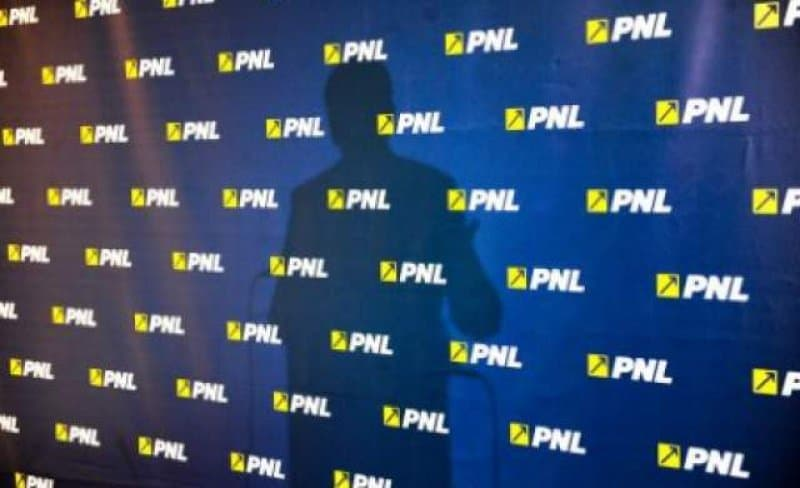PNL: PSD arata ca angajatii din privat sunt fraieri. In firmele publice ale doamnei FIREA, castigul mediu este de 4-5 ori mai mare decat in Bucuresti