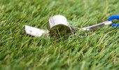 FCSB v SPORTING LISABONA: UEFA a trimis la BUCURESTI un ARBITRU cu GREUTATE