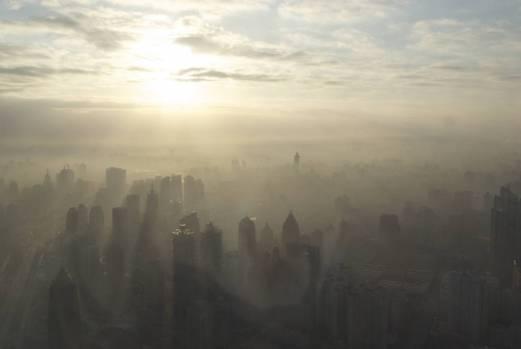 studiu, poluare, oameni morti, nivel global, oms