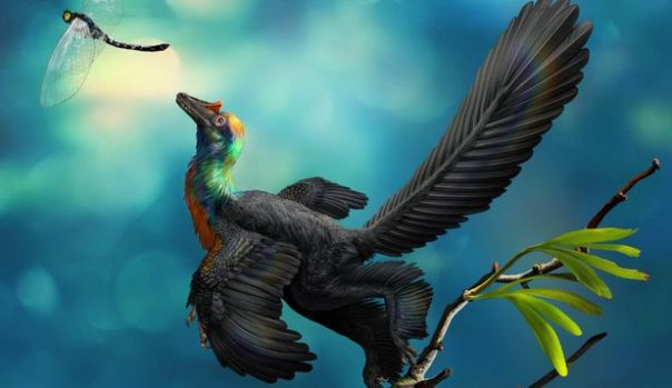 Cercetătorii au descoperit un dinozaur unic în China