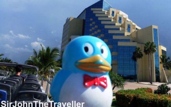 Ai auzit de pinguinul Vasile? Povestea incredibilă a unei jucării care s-a plimbat prin toată lumea