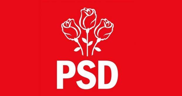 PSD și-a desemnat un nou purtător de cuvânt