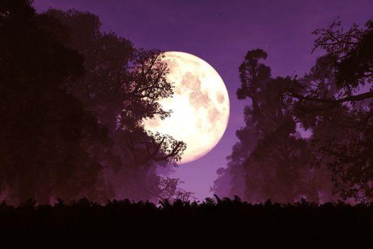 Superluna albastră sângerie: Când va avea loc eclipsa de lună și cum poate fi urmărită