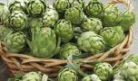 Ceaiurile de plante care țin diabetul sub control! Cum îți poți regla glicem…