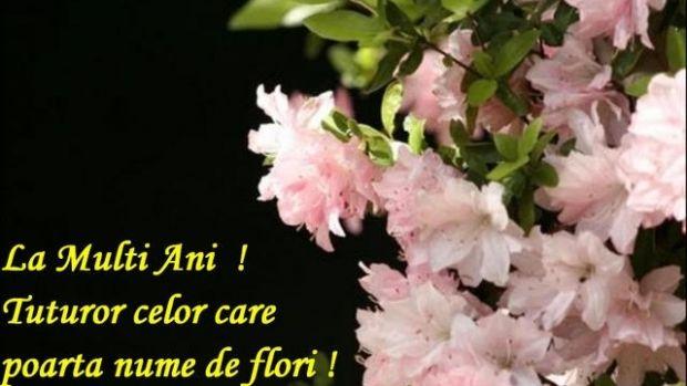 mesaje de florii, urari florii, sms-uri florii, felicitari de florii, mesaje de florii, duminica floriilor