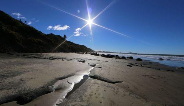 Noua Zeelandă: Descoperire macabră pe o plajă! Oamenii au rămas șocați