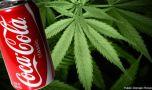 Coca Cola poartă discuții pentru lansarea unor băuturi care să conțină can…