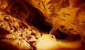 Una dintre cele mai vechi opere de artă din istoria omenirii, descoperită într-o peşteră locuită din Era Glaciară