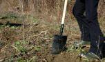 Dolj. Un tânăr de 17 ani ani a ucis cu lopata un bătrân de 69 de ani! Motivu…