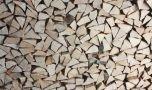 Comunitatea Forestierilor avertizează: Românii riscă să rămână fără lem…