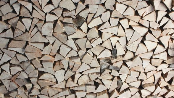 Comunitatea Forestierilor avertizează: Românii riscă să rămână fără lemn de foc în 2019