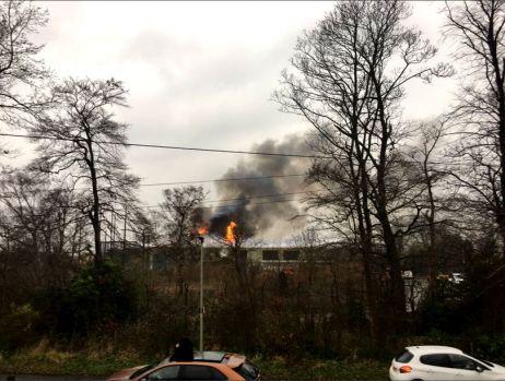 Marea Britanie. Grădină zoologică evacuată în urma unui incendiu