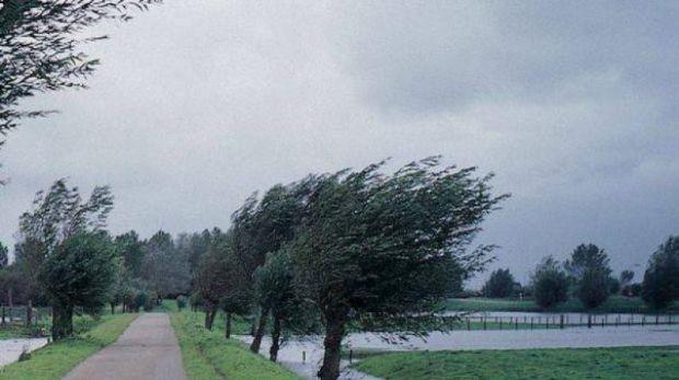 Cod galben de vânt puternic cu rafale de până la 75 de kilometri pe oră