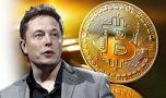 Elon Musk, CEO Tesla, elogiază Bitcoinul: Mai bun decât banii de hârtie!