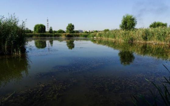 Primarul general Gabriela Firea vrea ca municipalitatea să preia mai multe lacuri din Bucureşti