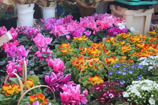 Analiză. Florile de 8 Martie îi costă pe români peste 20 milioane de euro!