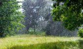 Vremea se încălzește dar nu scăpăm de ploi! Prognoza meteo pentru următoar…