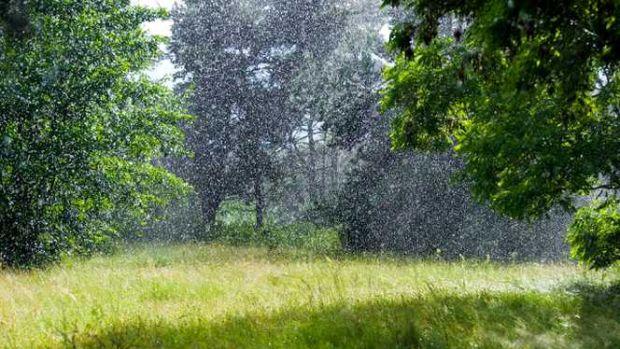 Vremea se încălzește dar nu scăpăm de ploi! Prognoza meteo pentru următoarele zile