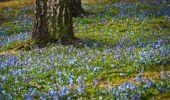 Prognoză meteo Paște. Cum va fi vremea de Florii și de Paște