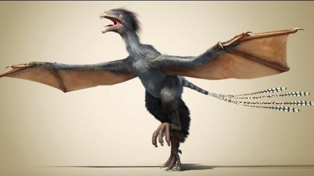 China. Fosila unui dinozaur cu aripi de liliac, descoperit de cercetători!