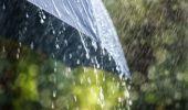 Cod galben de ploi torențiale și vânt puternic valabil pentru opt județe
