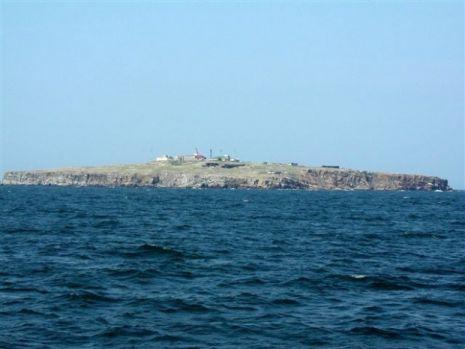 Cum a rămas Insula Șerpilor fără șerpi? Puțini români știu asta