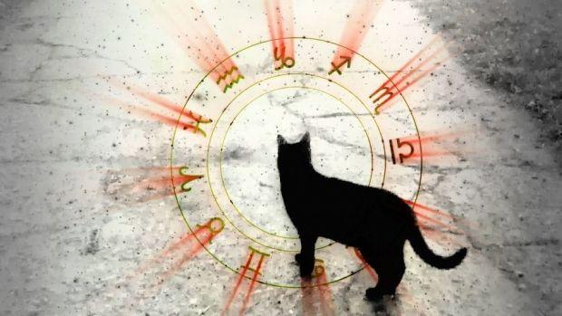 Horoscop 13 august 2019. Gemenii se opun schimbării, iar Racii sunt luați prin surprindere