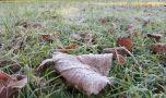 Cea mai scăzută temperatură din acest sezon s-a înregistrat la Joseni