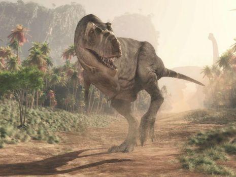 Descoperire șocantă! Cu ce anume era înzestrat fiorosul dinozaur Tyrannosaurus Rex