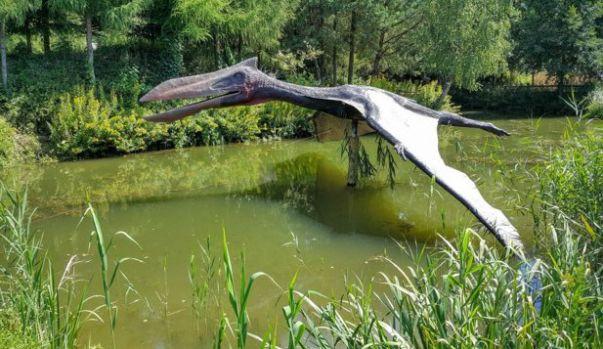 """""""Dragonul de fier"""", pterozaurul care vâna peştii din râurile şi lacurile din Cretacic"""