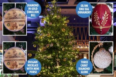Christmas-tree-costing-£11.9-MILLION-revealed-as-world's-most-expensive