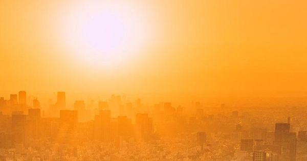 2019, cel mai călduros an înregistrat în istorie din Europa și al doilea cel mai cald an în lume