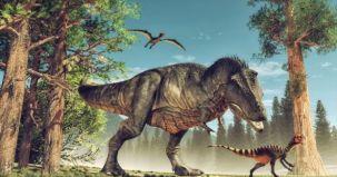 cauza, motiv real, asteroid, disparitie, dinozauri