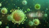 Live text: Coronavirus în România. 441 noi cazuri în ultimele 24 de ore, bilanțu…