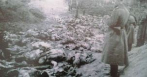 Masacru, fantana alba, romani, ucraina, sovietici,